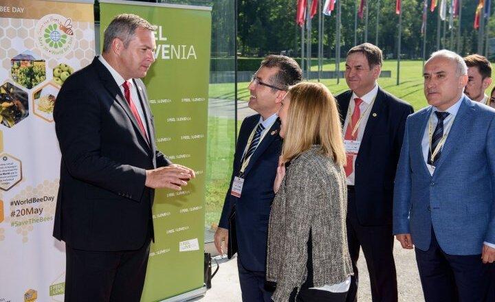 Click to enlarge image Prihodi_delegacij25.jpg