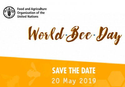 Round table: Raising awareness on the role of bees and pollinators in food and agriculture