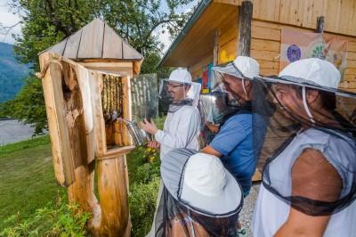 Svetovna čebelarska konferenca »Globalni izzivi v čebelarstvu«