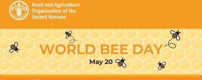 Virtual Meeting FAO - »Bee Engaged«