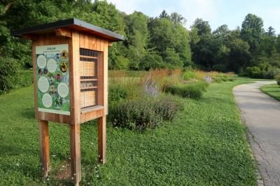 Minister mag. Andrej Vizjak ob Svetovnem dnevu čebel na ogledu čebelnika v Krajinskem parku Tivoli, Rožnik in Šišenski Hrib