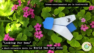 Looking for Bees - a short collective movie for World Bee Day 2020