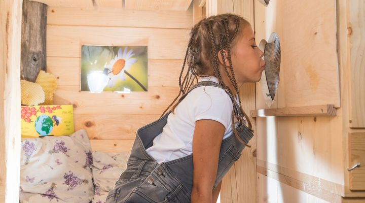 Girl kissing a bee hive