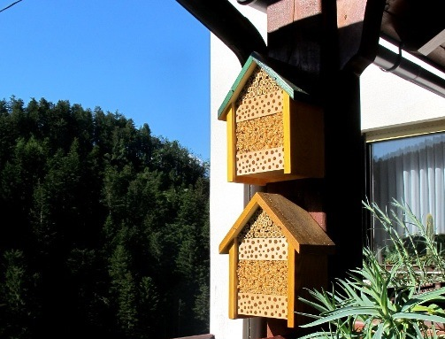Outstanding How To Make A Nest Box For Solitary Bees Celebrate World Download Free Architecture Designs Scobabritishbridgeorg